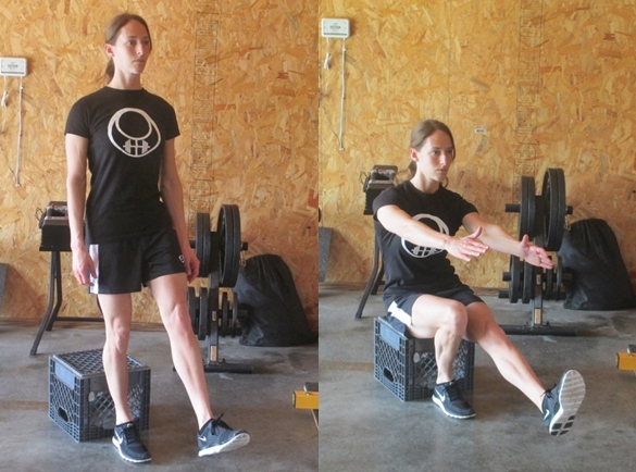 single leg squats to a box