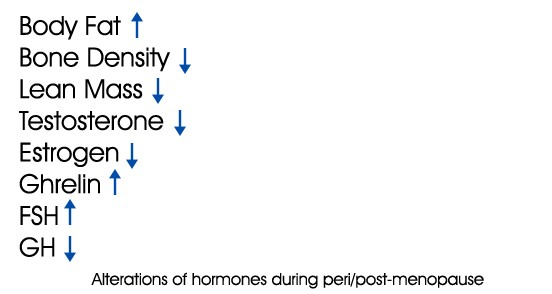 hormone changes during perimenopause